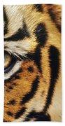 Bengal Tiger Face Beach Towel