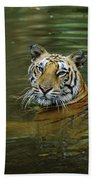 Bengal Tiger In Water Native To India Beach Towel