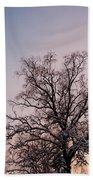Bergen  Winter Tree Beach Towel by Hakon Soreide