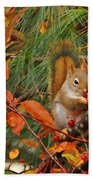 Berry Loving Squirrel Beach Towel
