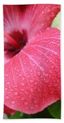 Berry Sprinkle Beach Towel