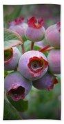 Berry Unripe Beach Sheet