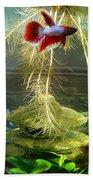 Betta Fish Moby Dick Beach Towel