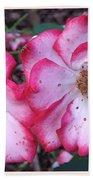 Betty Boop Roses Beach Towel