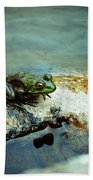 Between A Frog And A Hard Place Beach Towel