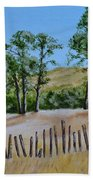Beyond The Fence Beach Towel