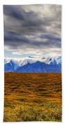 Beyond The Tundra Beach Towel