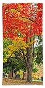 Big Colorful Sleep Beach Towel