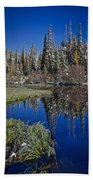 Big Cottonwood Canyon  Beach Towel by Richard Cheski