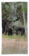 Big Daddy The Moose 1 Beach Towel