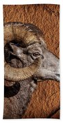Big Horn Beach Towel