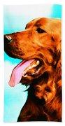 Big Red - Irish Setter Dog Art By Sharon Cummings Beach Towel by Sharon Cummings