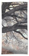 Big Sur Oak Beach Towel