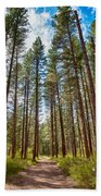 Big Valley Views Mvsta Trail Beach Towel