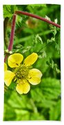 Bigleaf Avens Along Skunk Cabbage Trail In Mount Revelstoke National Park-british Columbia    Beach Towel