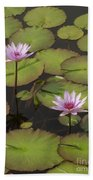 Biltmore Water Lillies Beach Towel