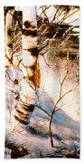 Birch By Stream Beach Towel