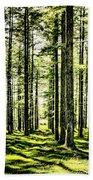 Birch Forest Fractal Beach Towel