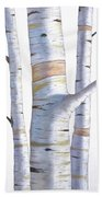 Birch Trees In Three Beach Towel