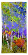 Birchtrees 56412 Beach Towel