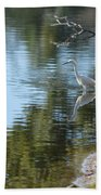 Bird And Pond Beach Towel