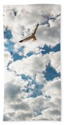 Bird And The Clouds Beach Towel