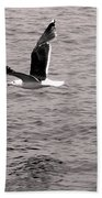 Bird Bw Beach Towel
