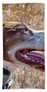 Bird Dog - Profile Beach Towel