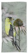 Bird Eating Seeds For One Digital Art Beach Towel