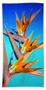 Bird Of Paradise 2013 Beach Towel