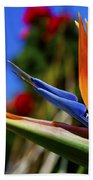 Bird Of Paradise Open For All To See Beach Towel