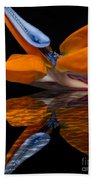 Bird Of Paradise Reflective Pool Beach Towel