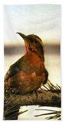 Bird On The Wire Beach Towel