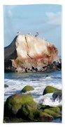 Bird Sentry Rock At Dana Point Harbor Beach Towel