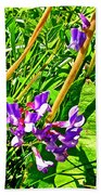 Bird Vetch On Bow River Trail In Banff National Park-alberta  Beach Towel