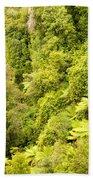 Bird View Of Lush Green Sub-tropical Nz Rainforest Beach Towel