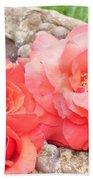 Birdbath Roses Beach Towel