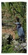 Birds In Florida Beach Towel