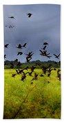 Birds Of The Wetlands V11 Beach Towel