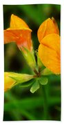 Birdsfoot Trefoil Beach Towel