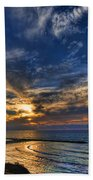 Birdy Bird At Hilton Beach Beach Towel