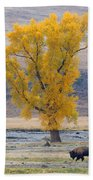 Bison And Cottonwood Beach Towel