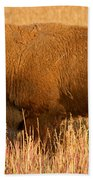 Bison At The Elk Ranch In Grand Teton National Park Beach Towel
