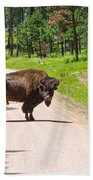Bison Blocking The Road Beach Towel