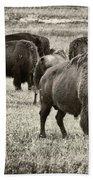 Bison Herd Bw Beach Towel