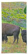 Bison Pair In Hayden Valley In Yellowstone National Park-wyoming  Beach Towel