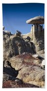 Bisti Badlands 5 Beach Sheet