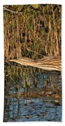 Bittern Stretched Out Beach Towel