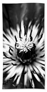 Black And White Clematis Beach Towel