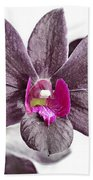 Black And Purple Orchid Beach Towel